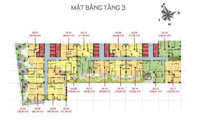 tang-3
