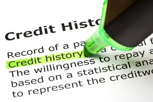 """""""Credit history"""" highlighted in green, under the heading """"Credit history"""""""