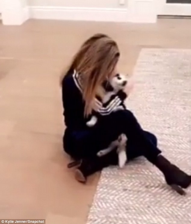 Adding to the collection: The 32-year-old reality star got a cuddle with the latest addition to the collection of dogs owend by Kylie as show sat on the floor in heeled boots and Adidas top