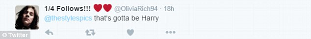 Definitely him: One emphatic One Direction fan wrote 'That's gotta be Harry'