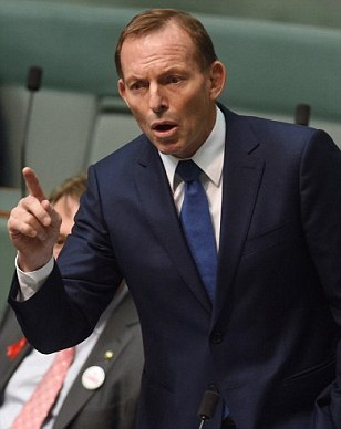 Tony Abbott hits out at unemployed people receiving welfare for saying they have 'a sore