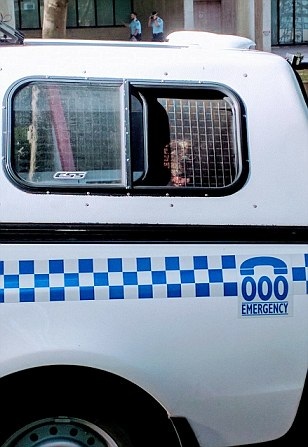 Police dog 'left in the back of a patrol wagon for an hour in 30-degree heat'