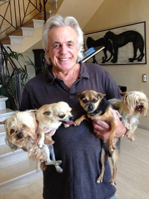 Nightclub magnate Peter Stringfellow has hired a private plane to transport his beloved dogs from his holiday home in Spain to Italy