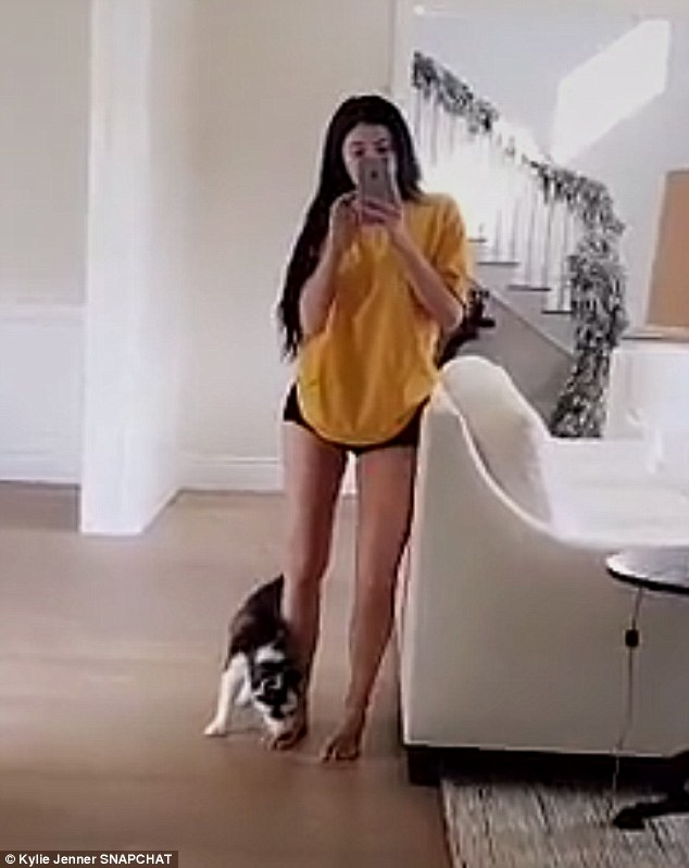 New arrival: Kylie Jenner shared video on Snapchat Sunday showing herself with what looked to be a tiny husky mix