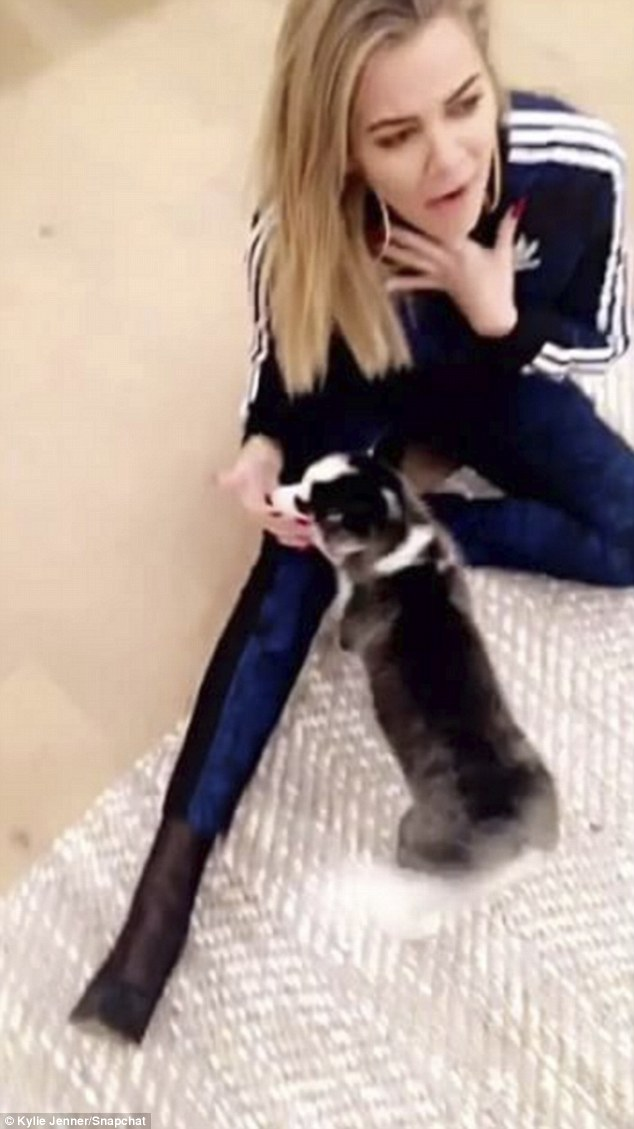 Smitten: Kylie's big half-sister Khloe Kardashian also dropped by to play with the blue-eyed pup