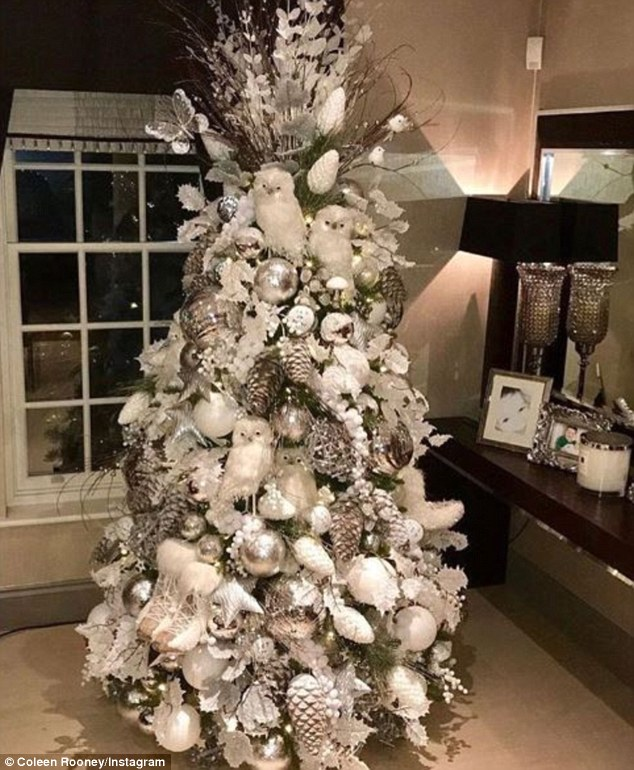 Twit-Twoo-ney! Coleen shared a proud snap of her impossibly lavish Christmas tree last month,  decked out with a multitude of owls