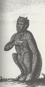 navajo skinwalker legend
