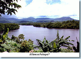 Photo: A view on Pohnpei