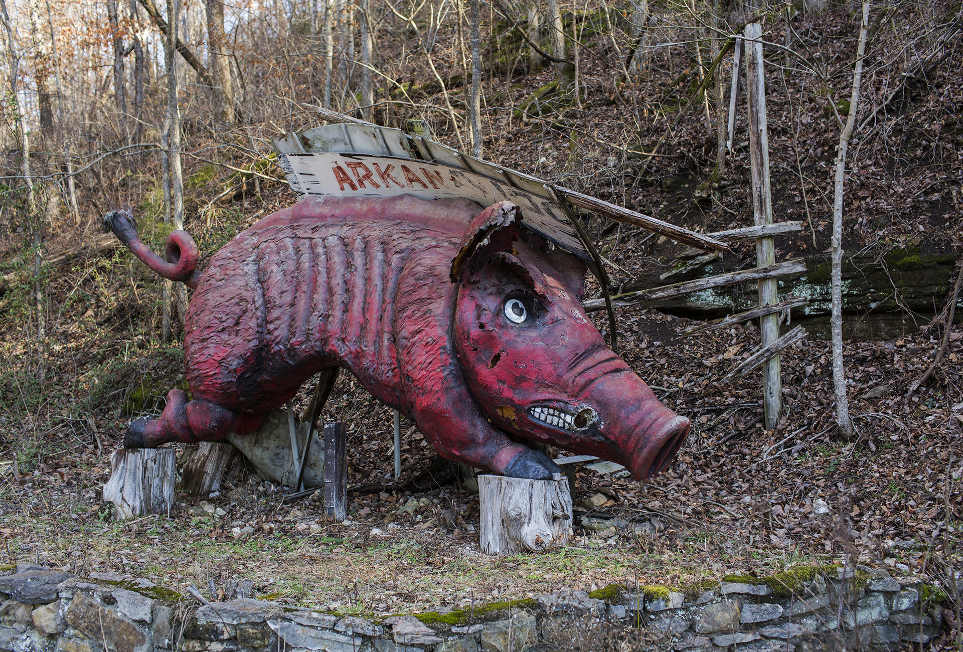 "While the original ""Li'l Abner"" strip took place in Kentucky, Dogpatch USA offered visitors a nod to its adopted home with this Razorback statue."