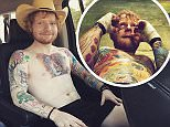 Despite his wholesome image, Ed Sheeran has more than 60 tattoos on his body, pictured