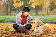Find the Perfect Dog Care for you