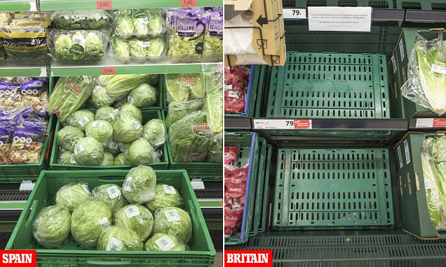 Supermarkets ban online sales as rationing buying spreads