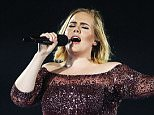 An Adele fan saw ambulance and stretchers arrive at the incident. She believed the person collapsed due to 'a spine injury'