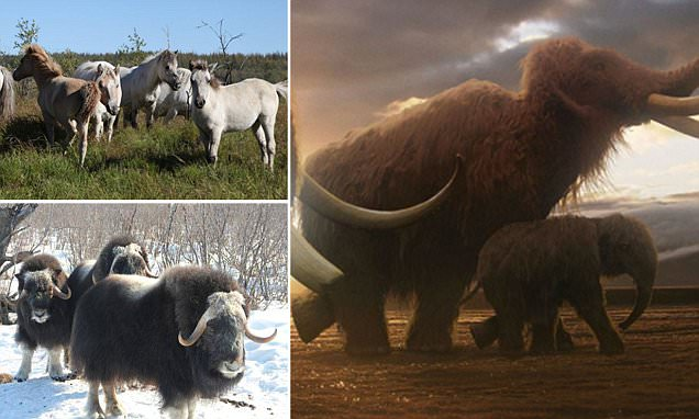 Scientists reveal plan to restore Siberia to the Ice Age