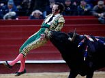 Juan Jose Padilla, dubbed 'The Pirate' because he has worn an eyepatch since he lost his eye after being gored in the face by a bull, is hurled into the air by the raging beast