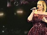 Adele was forced to joke and chat with the audience at her Adelaide concert on Monday night when a black out brought the event to a standstill (pictured is Adele performing before the lights went out)