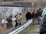 A body is recovered near Silver Lake in Highland, Ill., on Thursday, March 16, 2017, after a car with an infant was pulled from the lake earlier in the morning. (Laurie Skrivan/St. Louis Post-Dispatch via AP)