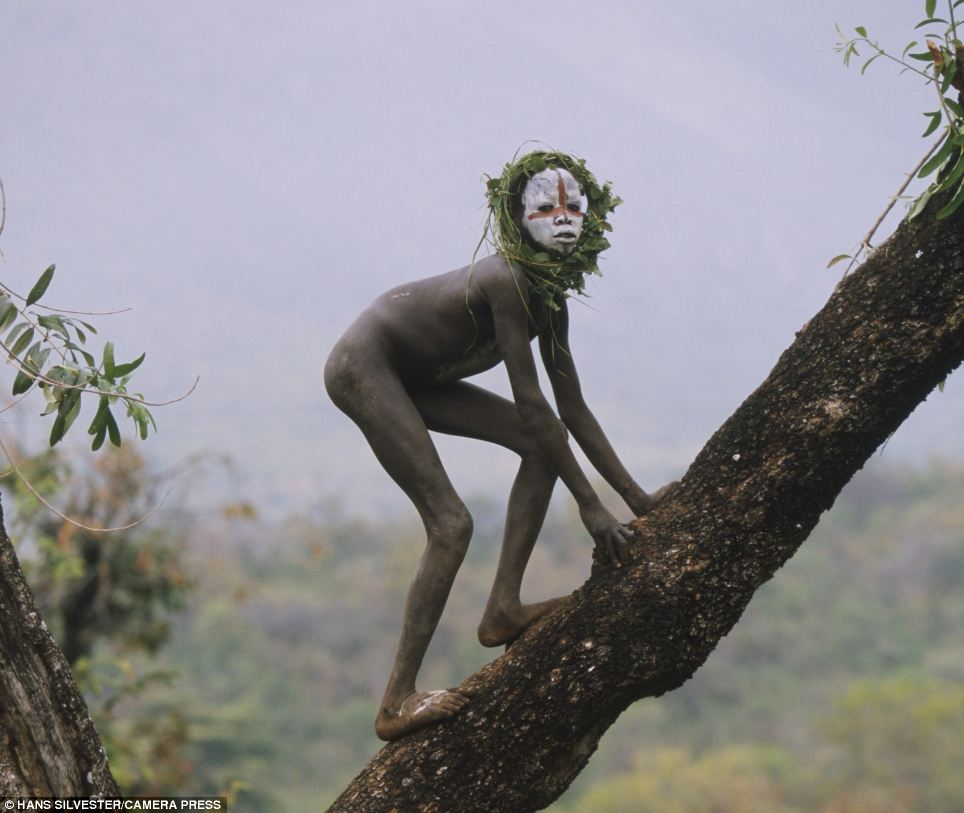 Climbing high: A young boy, his face decorated with a large red cross and naked apart from his grassy headdress climbs a tree