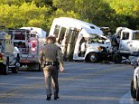A terrifying new video shows a truck (pictured) swerving all across a Texas road in Uvalde County, moments before it plowed into a church bus, killing 13 people