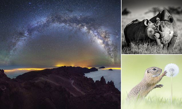 Jaw-dropping photographs of the natural world