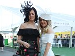Mane attraction: Ultra-polished guests boasted bouffant curls and embellished decadent dresses as they made their way through the racecourse