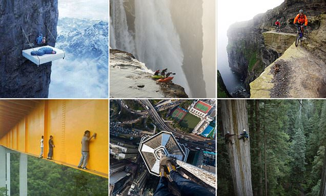 Are these the most daring tourists EVER?