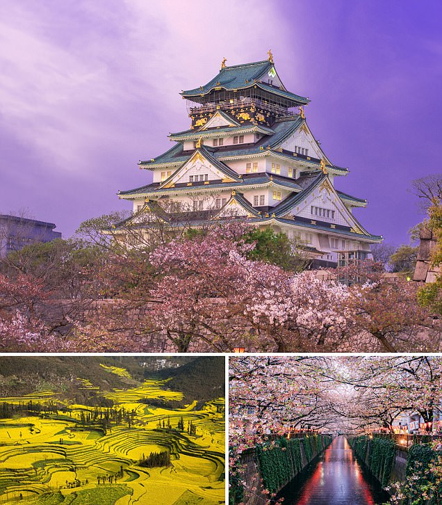 Breathtaking photos of spring from around the world