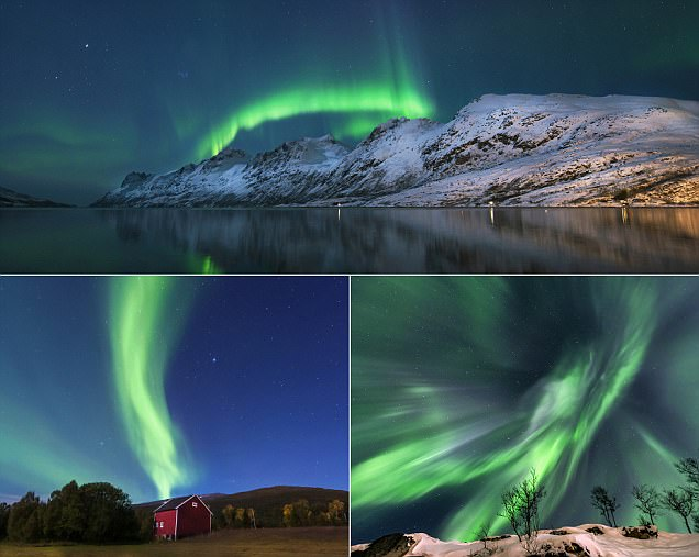 The Northern Lights in all their glory!