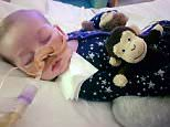 The plight of eight-month-old Charlie Gard, who suffers from the incredibly-rare mitochondrial depletion syndrome, has captured the nation's hearts