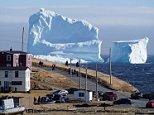 This enormous iceberg, one of the first of the season to float into �?iceberg alley,' has turned the small town of Ferryland into a sudden tourist spot