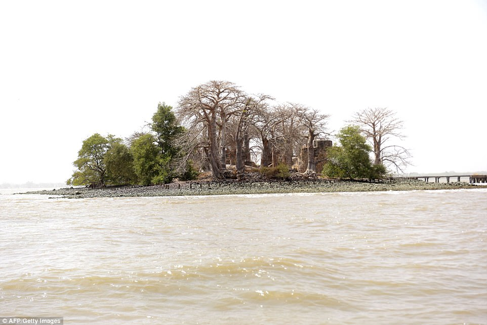 A view of the island from the water. Kinte's descendants are pressuring the government to preserve the land