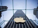 Bullying tactics?Apple sunk Imagination shares by 61 per cent last month, knocking £500 million off the firm's value, when it suddenly announced it planned to stop using Imagination's technology within two years and would, instead, develop its own graphics chips