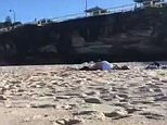 Beachgoers at Sydney's famous Bronte Beach were left in shock when a man and a woman (pictured) got amorous in front of them on Sunday