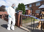 Forensics experts at the home of a small child  who was mauled by a pack of dogs, believed to have come from a nearby house