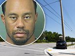 Bad news: The Probable Cause Affidavit from Tiger Woods' DUI arrest reveals that the golfer was asleep at the wheel when he was approached early Monday (Woods above in March)