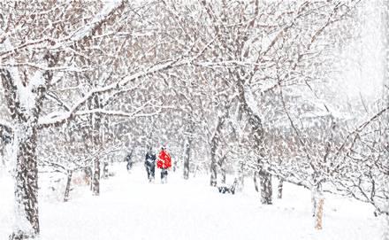 []-看谁人,敢与我雪中共舞,漫步空城!