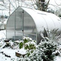 efe903401 200x200 - 7-мь мероприятий которые нужно сделать еще зимой в теплице