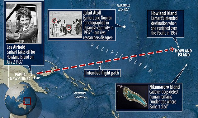 Dogs find proof of Amelia Earhart's remains, experts claim