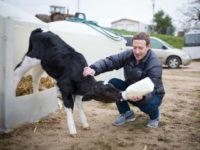 5 Indicators That Mark Zuckerberg Is Considering a Run for President