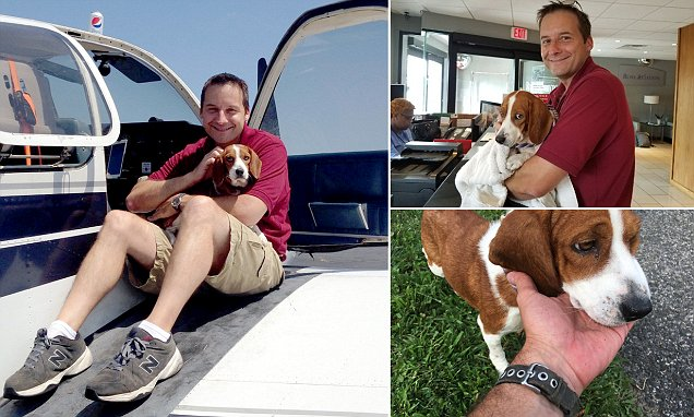 'Death row' dog gets a second chance at life