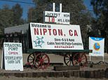 One of the nation's largest cannabis companies will purchase the entire desert town of Nipton, California, and turn it into a pot paradise