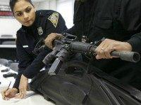 American Bar Association Asks States to Adopt Firearm Confiscation Laws