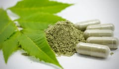 10 Benefits of Green Tea Extract