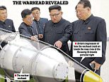 Kim Jong-un was pictured inspecting the device – the design and scale of which indicated it had a powerful thermonuclear warhead. The multi-stage mechanism of a basic hydrogen bomb is explained bottom left