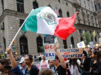 Dale Wilcox: DACA Aliens Should 'Dream' to Return and Reform