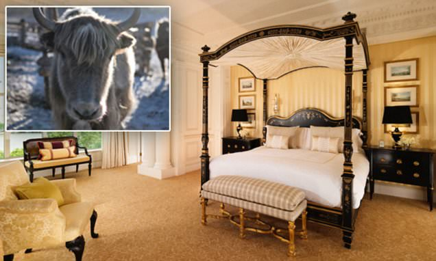 Does the Savoy have the world's most comfortable bed?