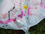 The helium balloon had been released by Ava and her mum Lucy from Manchester. She wrote a message on the front asking whoever found the balloon to post on Facebook so that her parents could see how far it got