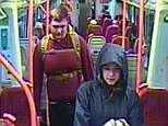 Margaret Moloney (pictured)is feared kidnapped after police released CCTV footage of her on a train with a mystery man