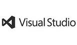 msvs_logo_gs
