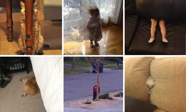 Hilarious gallery reveals toddlers' hide-and-seek fails
